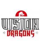 VISION DRAGONS